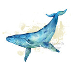 Watercolour Whale ~ A5 Fine Art Giclee Print | Ocean Marine Wall Home Decor