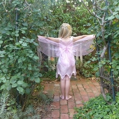 Pink Fairy Dress with Butterfly Wings