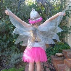 Gumnut Fairy Dress with hat and wings
