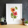 Watercolour Nasturtiums Instant Download Botanical Wall Art   A3, A4 & A5