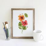 Watercolour Nasturtiums ~ A5 Giclee Print | Botanical Floral Wall Decor