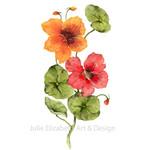 Watercolour  Nasturtiums~ A4 Giclee Print Botanical Floral Wall Art Decor