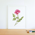Watercolour Rose Instant Download Printable Floral Wall Art | A3, A4 & A5 sizes