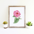 Watercolour Begonia Instant Download Printable Floral Wall Art   A3, A4 & A5