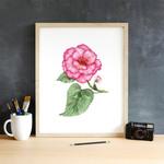 Watercolour Begonia ~ A5 Giclee Print | Botanical Floral Wall Decor