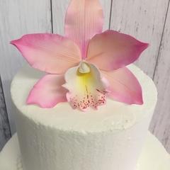 Gumpaste Cymbidium Orchid - Pink
