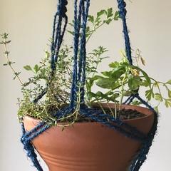 Macrame Pot Plant Hanger - Coconut