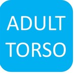 Build Your Own Custom Piece - One Adult Torso