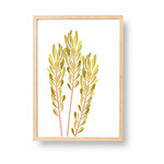 Simple Foliage | A3 Print