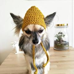 Crochet Dog Hat, Dog Cap, Dog Beanie, Dog Hat, Dog accessories, Pet accessories