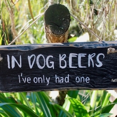 In Dog Beers Man/Girl Cave Reclaimed Timber Sign