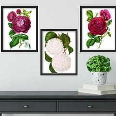 Vintage Botanicals Set 1 Printables