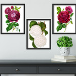 Vintage Botanicals Set 1 Printables