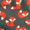 """Size 3 & 4 """"Foxes"""" Shorts"""