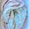 Hedgehog Mint Fleece Blanket