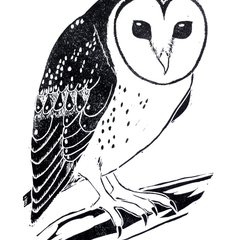 Masked Owl / Australian Owl  / Australian/ Original Artwork / Linocut / Block Pr