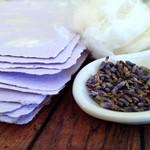Lavender Cotton - Handmade Paper