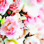 Watercolor Print - Floral - Peony Bouquet