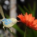 Blue Fairy Wren Garden Decoration
