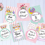 Baby Milestone Cards, Owl Theme, Pink, Girls, New Mum, Pack of 30 Cards