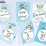 Baby Milestone Cards, Owl Theme, Blue, Boy, Mum to Be, Pack of 30 Cards