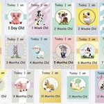 Baby Milestone Cards, Farm Animals, Unisex, Pack of 32 Cards