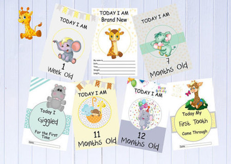 Baby Milestone Cards,