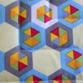 (SECONDS) 2 x Reversible Pot Holders - Bright Honeycomb