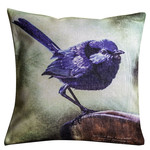 Splendid Blue Wren Cushion Cover