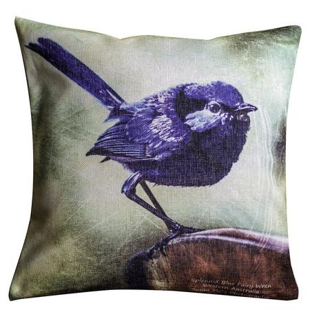 Splendid Blue Wren Cushion Cover