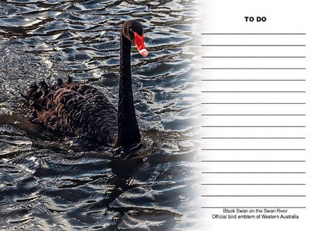 Black Swan 'To Do' Fridge Magnet with white board marker