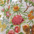 Vintage Retro Australian Wildflowers Linen Cushion