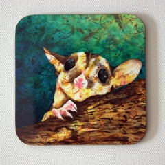 Sugarglider possum - art drink coasters