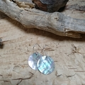 Natural shell earrings handcut in Melbourne. Shells collected in Port Phillip Ba