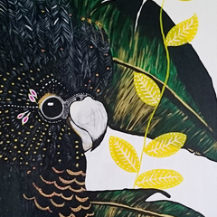 Original Black Cockatoo 60cm x 90cm Canvas