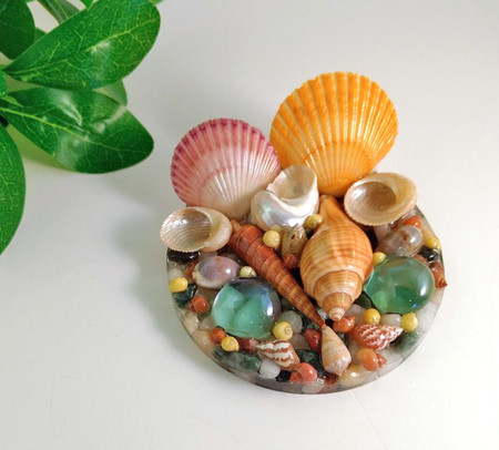 Seashell Resin Display Table Ornament