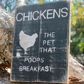 Chickens The Pet That Poops Breakfast Reclaimed Timber Sign