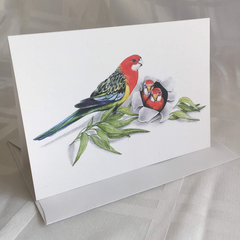 Eastern Rosellas - Australian wildlife art greeting card. bright colourful