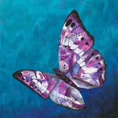 Chrysanthmum Rain - Butterfly fine art print ( 8 x 8 inches)