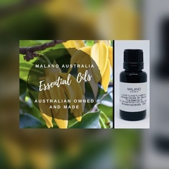 Ylang Ylang Flower 