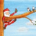 Santa & Kookaburra Christmas Card, Australian Animals Christmas Card, Christmas