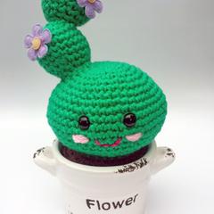 Friendly Plant - Happy Cactus: Purple Flowers