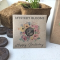 Happy Birthday Gift Pack Mystery Seed Flower Gift