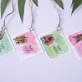 Christmas Gift Tags - Set of 12 - Australian Eucalyptus Range