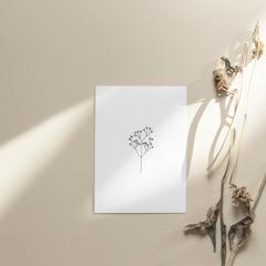 Minimalist Botanical Line Drawing Print