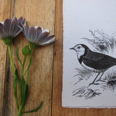 Antique Bird printed Handmade Recycled paper sheets, Handmade stationery.