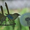 Brass & Resin Fairy Wrens on a Branch Garden Decoration