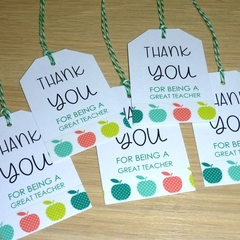 Set of 5 Teacher thank you gift tags - apples