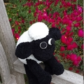 "Black and white ""Shaun sheep"" soft toy. Hand made cuddly softie. Farm animal."