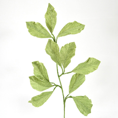 Foliage for Paper Flowers